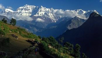 Gurja Himal Trek (Hidden Village)